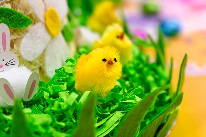 Easter bonnet decorating ideas