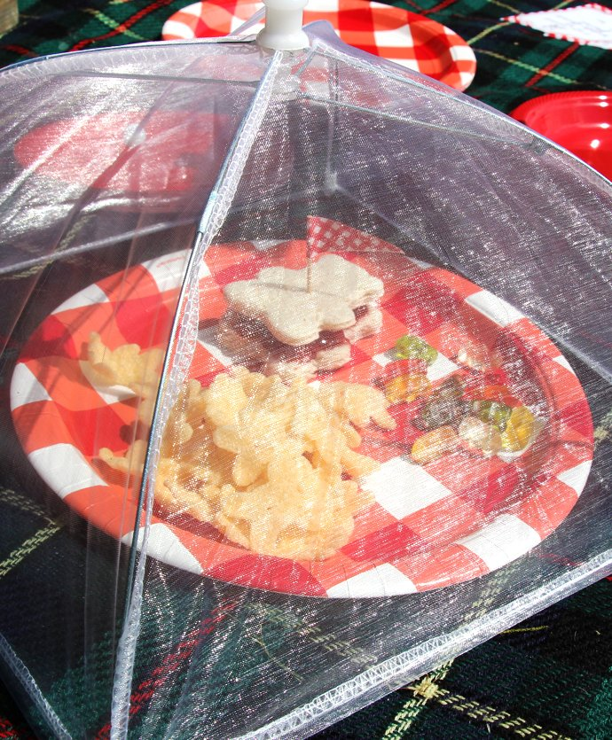 Picnic Food Covers