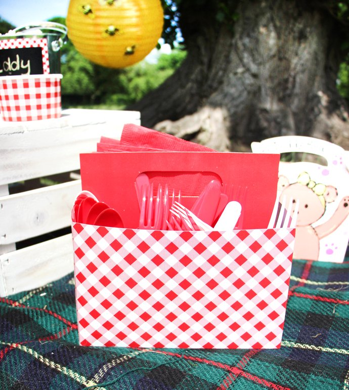 Picnic Napkin Holder