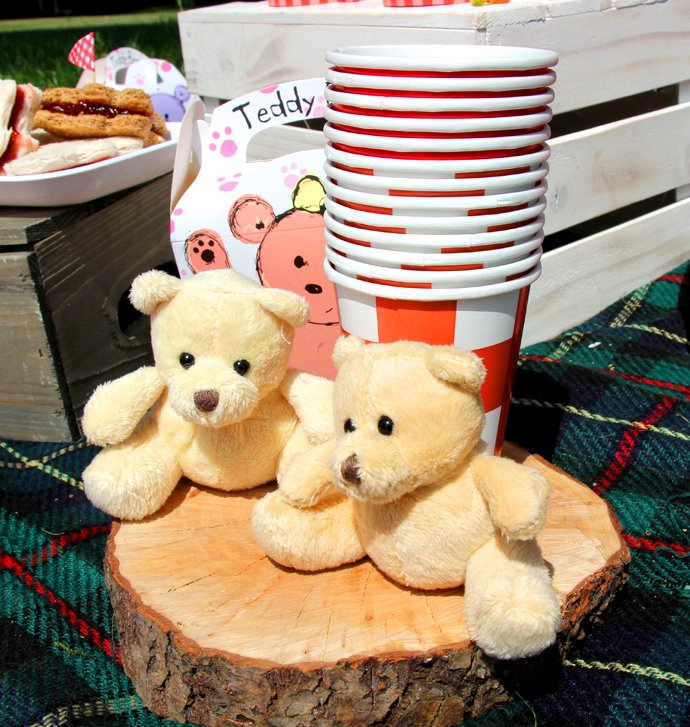 Teddy Bears at a Teddy Bear Picnic
