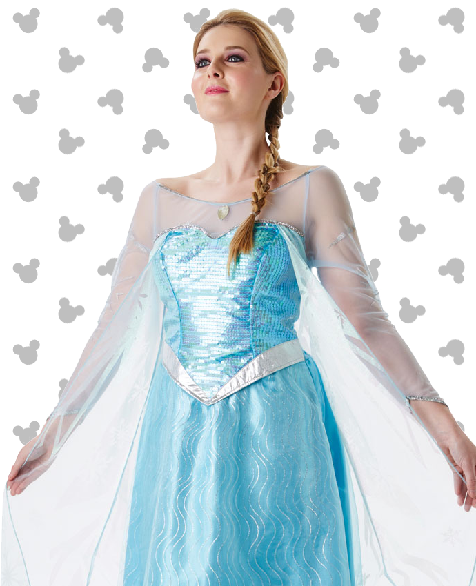 Elsa Frozen Costume for Adults