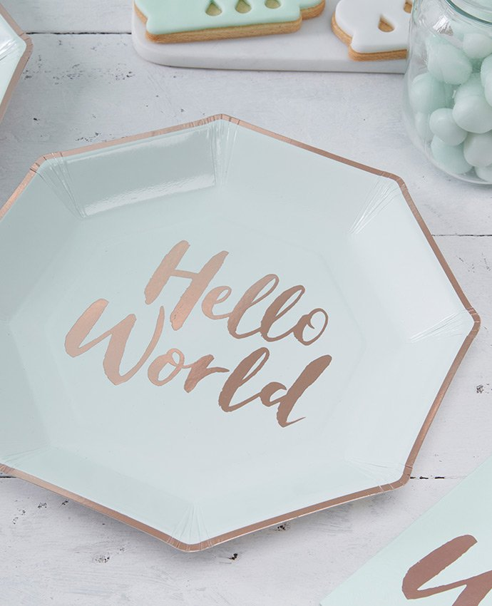 Hello World Baby Shower Plates