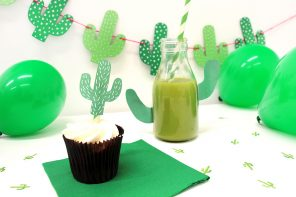 Cactus Party Ideas