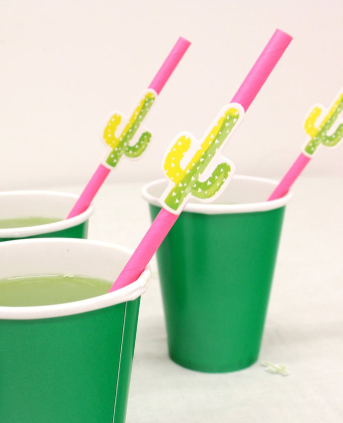 Cactus Straw Toppers