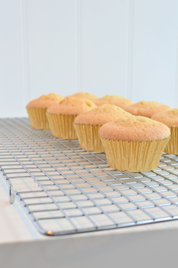 Cupcakes Just Out of the Oven