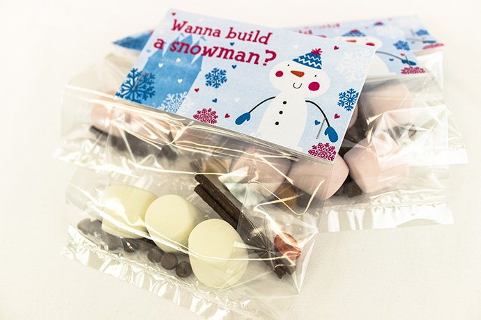 Frozen Party Food Ideas - Build a Snowman Kit