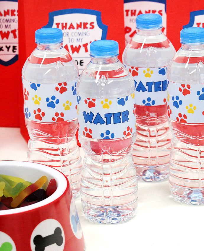 Paw Patrol Water Bottles