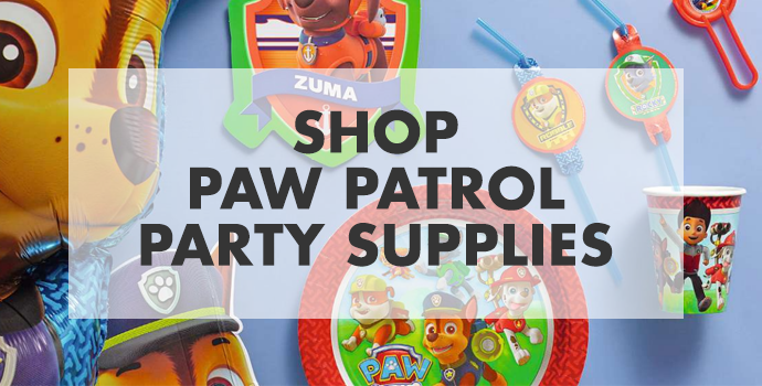 Shop Paw Patrol Party Banner