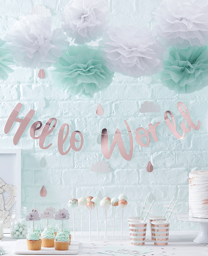 Hello World Baby Shower Supplies