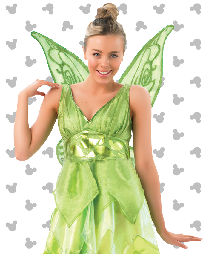 Tinkerbell Costume for Adults