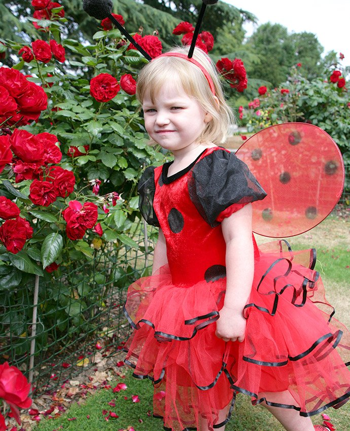 Ladybird Costume for Kids