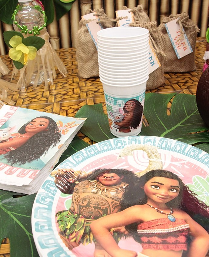 Disney Moana Party Supplies
