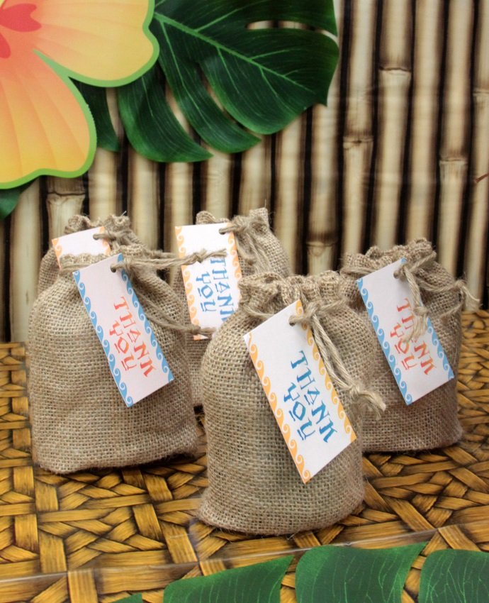 Homemade Moana Party Bags