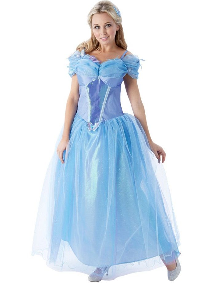 Cinderella fancy dress costume