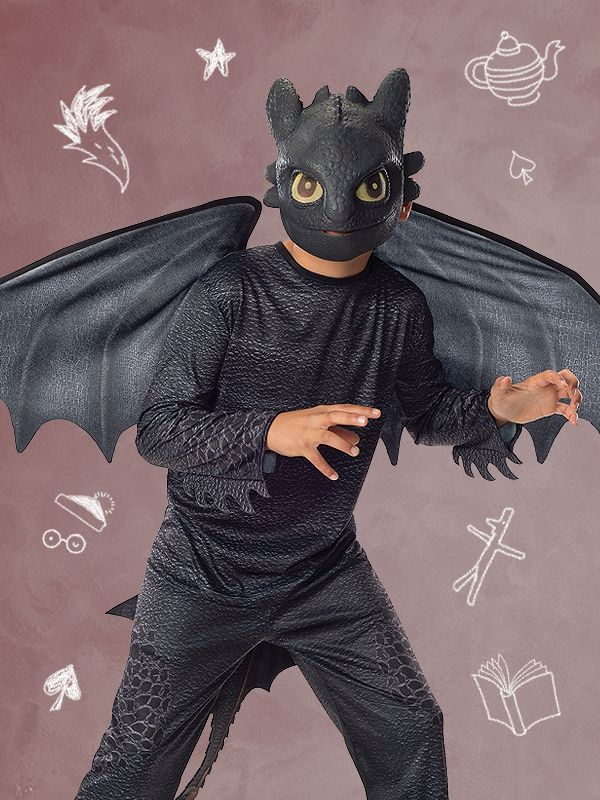 How to Train Your Dragon Toothless fancy dress costume