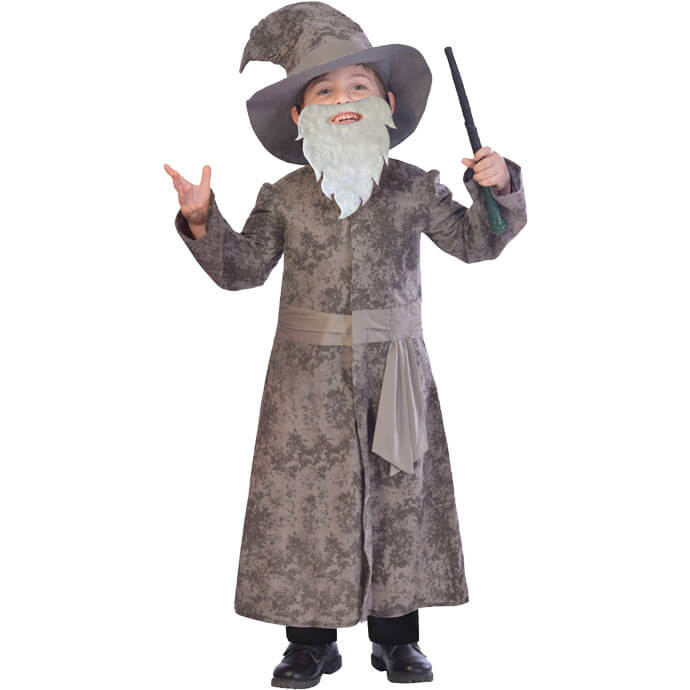 Albus Dumbledore fancy dress costume