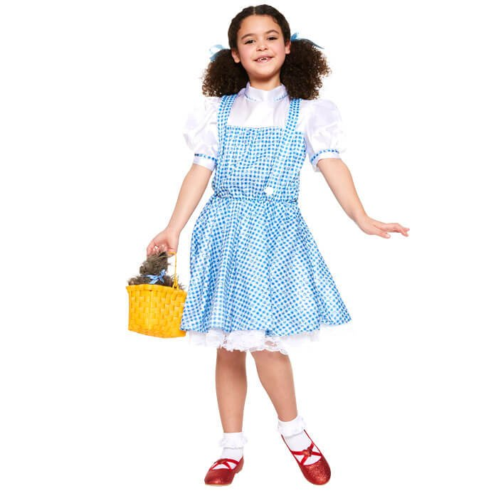 Wizard of Oz Dorothy World Book Day fancy dress costume