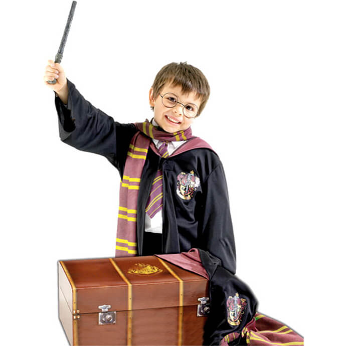 Harry Potter fancy dress costume with suitcase accessory